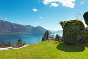 schweizisk landskap: trädgård foto