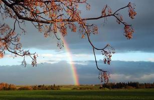 landskap med regnbåge foto
