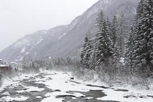 vinterlandskap med dimmigt väder foto