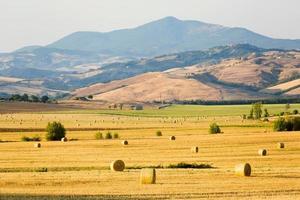 Toscana landskap, äng med balar