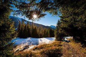 slovakiska belianske tatry bergslandskap foto