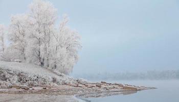 morgondimma på vintern foto