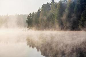 dimmig sjö