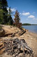 faller sjön foto