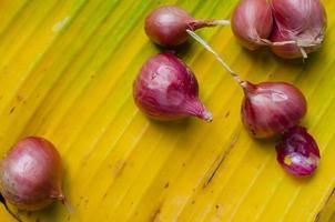 röda lökar på gula bananblad. foto