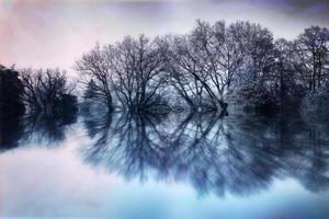 den magiska sjön foto