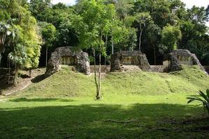 mayan ruiner i tikal, guatemala foto