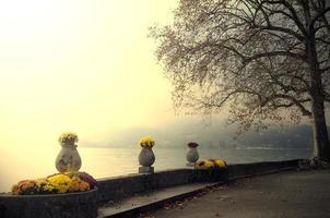 annecy sjö och blommor foto