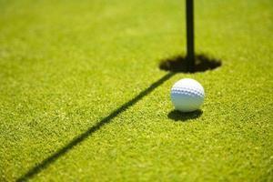 golfklubb foto