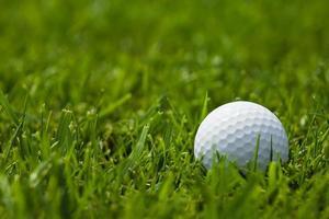vit golfboll på fairway närbild foto