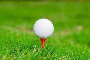 golfboll på tee. grönt gräs. foto