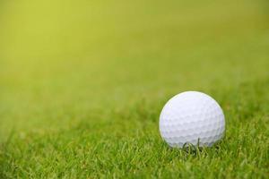 golfboll på banan foto