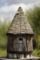 fågelhus foto
