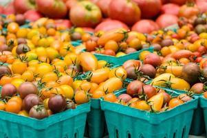lådor med små tomater på marknaden