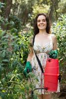 kvinna sprutning tomat foto