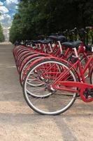 många cyklar som står i en park på sommardag foto