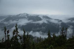 spår norr om vitt pass - 2 foto