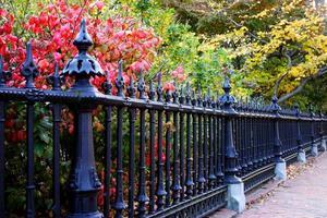 boston offentliga trädgård