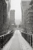 manhattan highline på vintern, nyc foto