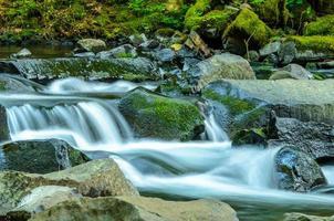 multnomah faller i Portland Oregon