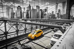 brooklyn bridge new york city foto