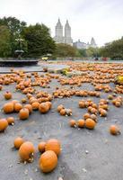 halloween i central park foto
