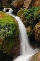 rent färskt vattenfall som rinner över mossiga stenar foto
