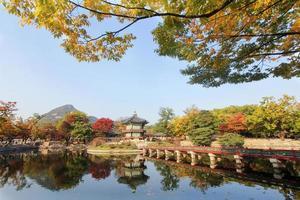 kunglig trädgård i Gyeongbokgung-palatset foto