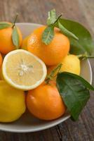 citroner och mandariner foto