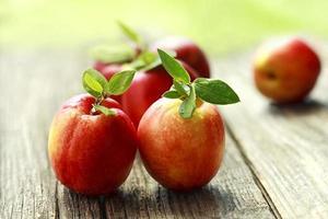 färsk aprikos på ett träbräde foto