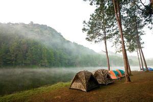 tält uppsatta för camping foto