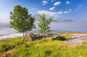 vildt läger i vackert dimmigt landskap foto