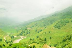 grönt terrasserat risfält i sapa, lao cai, Vietnam foto