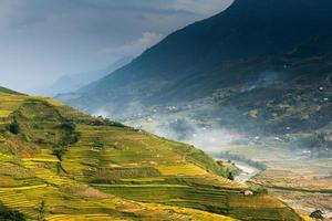 vacker risterrass i sapa, Vietnam foto