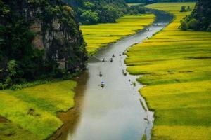 flod genom risfält i tam coc, ninh binh, Vietnam