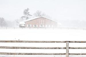 snö faller foto