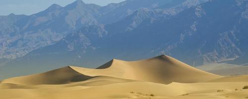 öken sanddyner foto
