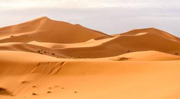 erg chebbi sanddyner i den marockanska öknen foto