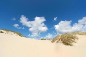 sanddyner på den nederländska wadden ön foto