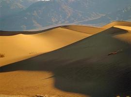 sanddyner foto