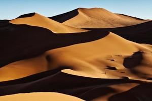 stora sanddyner i namibien foto