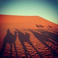 desert erg chebbi, marocko foto