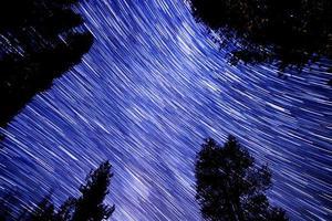 stjärnspår i nationalskogen i sequoia foto