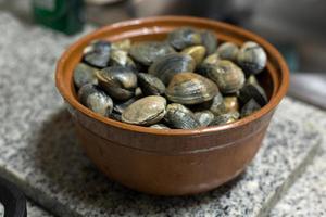 färska rå manila musslor foto