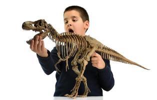 barn och dinosaurie foto