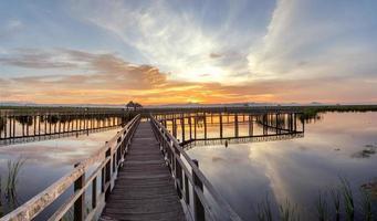 träbro i lotus sjö vid solnedgångstid
