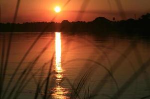 solnedgångar foto