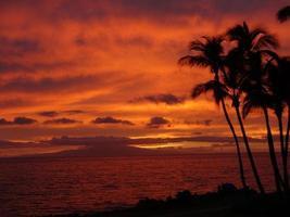 brinnande solnedgång foto