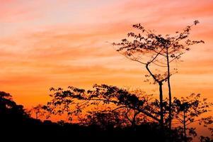 lätt solnedgång foto