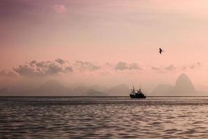 fiskebåt pao de açucar (sockerbröd) foto